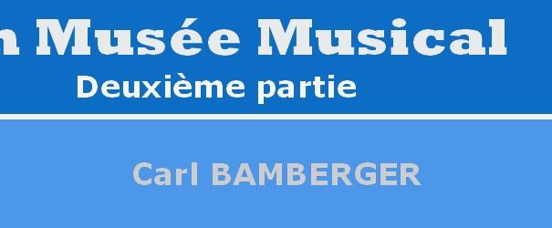 Logo Abschnitt Bamberger Carl de